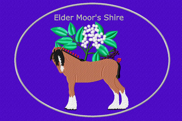 Elder Moor´s Shire